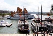 Du lịch Quảng Ninh tự túc